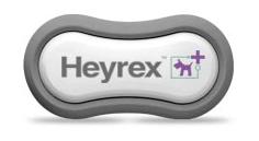 Heyrex